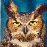 This great horned owl is watching you!