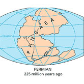 The diagram shows the supercontinent Pangaea (meaning 'all lands' in Greek).